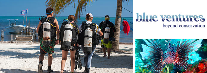 Lionfish Dive Trip in Belize