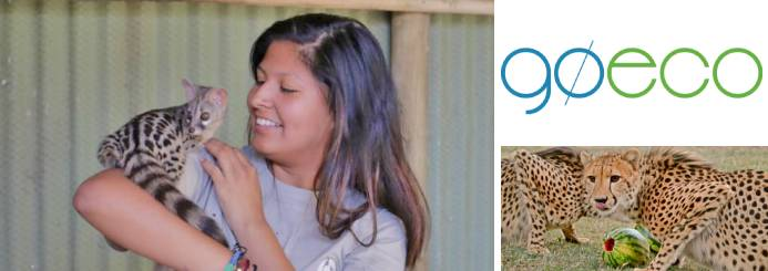 Wildlife Rehabilitation in South Africa