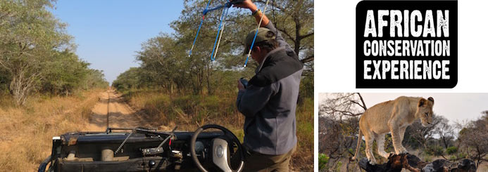 Wildlife Research in a Big 5 Reserve