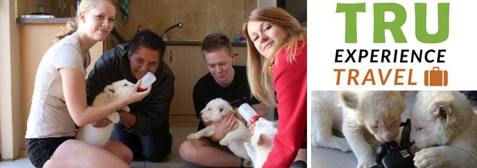 Volunteering / Internships with Animals
