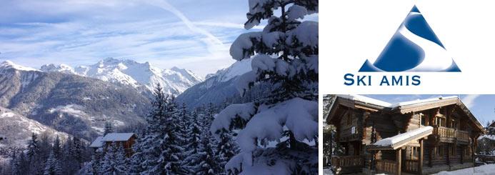 ski jobs with Ski Amis
